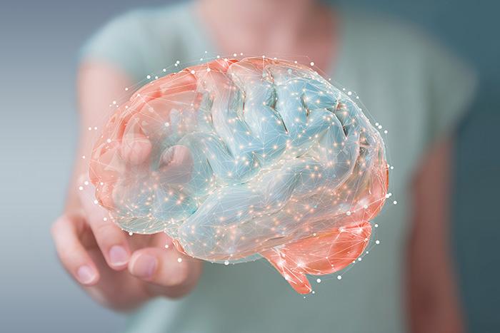 cervello memoria e concentrazione