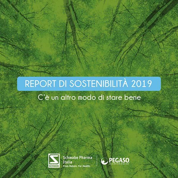 Anterprima articolo Report di Sostenibilità 2019 Schwabe-Pegaso