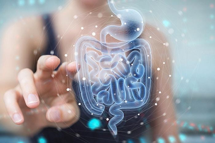 intestino sede di microbiota e microbioma